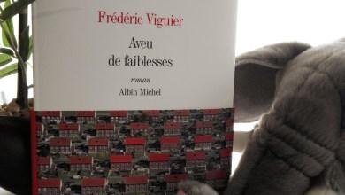 Photo de Aveu de Faiblesses de Frédéric Viguier
