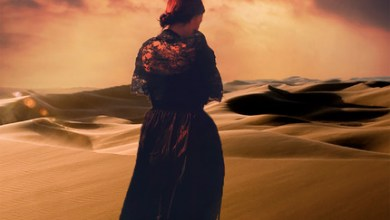 Photo of Filles du désert de Chris Bohjalian
