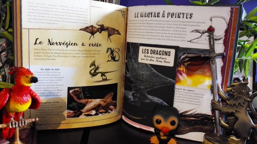 Wizarding-World---La-magie-du-cinéma-Vol.2---Créatures-Fascinantes-Extrait-1