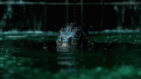©: La Forme de l'eau, del Toro
