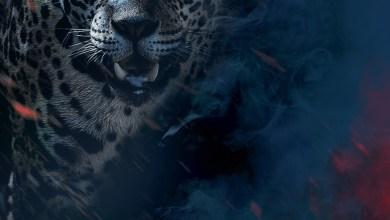 Photo de La Malédiction du Jaguar, de Aurore Doignies