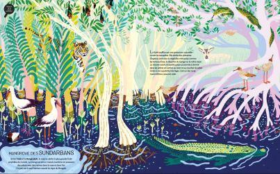 Jungles et Réserves Naturelles du Monde_3