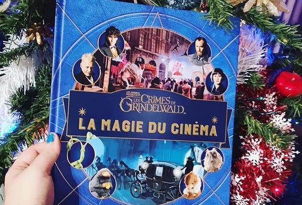 Photo of La Magie du Cinéma :  Les Crimes de Grindelwald