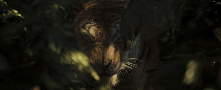 Mowgli 01