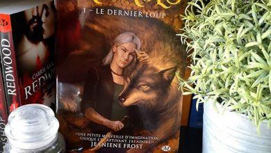 Photo of Sauvages T01 : Le dernier Loup de Maria Vale