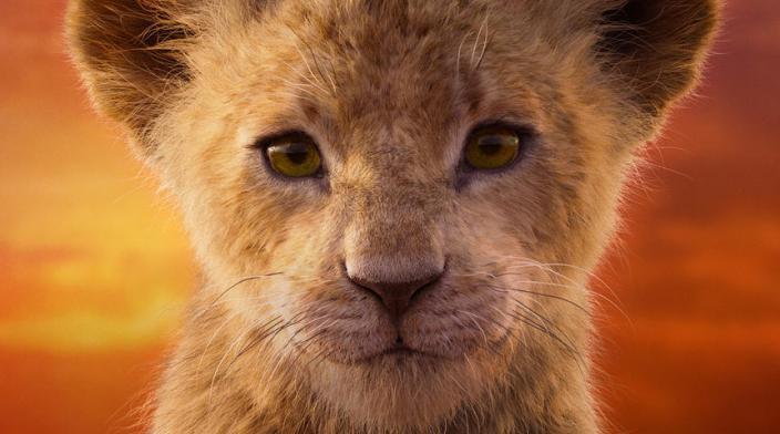 Roi Lion 3