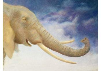 L'éléphante qui cherchait la pluie - Michel Piquemal Alex Godard 3