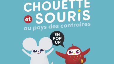 Photo of L'extraordinaire voyage de Chouette et Souris au pays des contraires: en pop-up de Bae Joohye