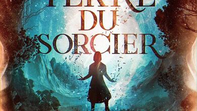 Photo of Le clan Flaherty, T1 : La terre du sorcier d'AurElisa Mathilde