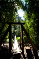 COCHAMO / Vallée de Cochamo - montée vers le refuge La Junta