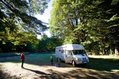 CHILI / Bivouac dans la forêt de Termas Geometricas