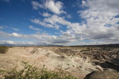 PN Ischigualasto (Valle de la luna) / Le plus vieux fossile de dinosaure a été découvert ici