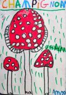 Voilà des champignons que l'on a vu à la Cumbrecita.