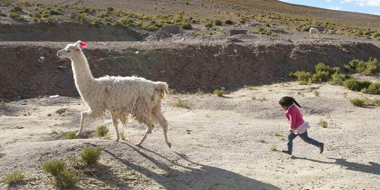 SUD LIPEZ / Criselda court après son lama (Villa Mar)