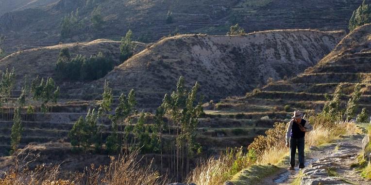CANYON DE COLCA / Balade sur les hauteurs de Yanque