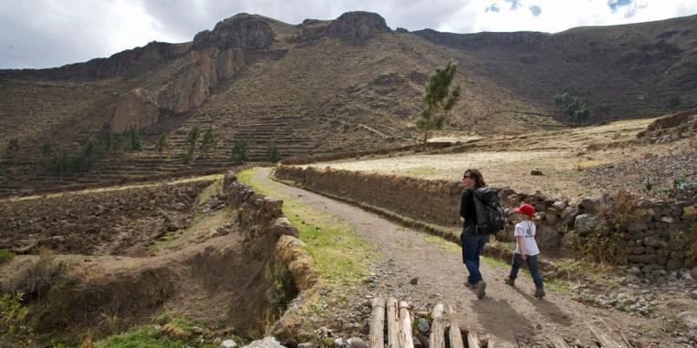 CANYON DE COLCA / Balade sur les hauteurs de Coporaque qui réserve de belles vues sur les champs en terrasse qui couvrent les pentes du canyon