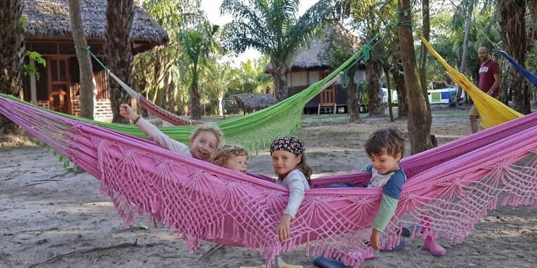 PN MADIDI / Dans les marais : brochette franco-allemande pour alligator bolivien :-) (©Maluck)
