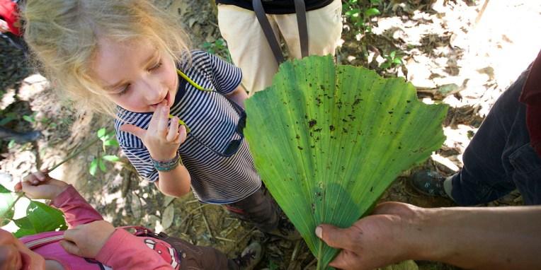 """PN MADIDI / Anna teste pour vous la termite. """"Elle a un gout de bois"""" nous dira t-elle :-)"""