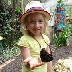 """MINDO / Ferme de papillons - Anna appâte avec de la banane écrasée (""""ca marche trop bien !"""")"""