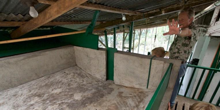 FINCA SANTA ELENA / Le café de A à Z : premier bassin de tri avant le moulin humide