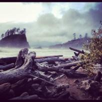 Second Beach, November 19, 2012, 4 miles, 350 ft,