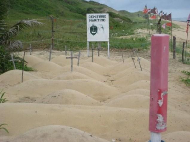 340-2o-dia-litoral-sul-santuario-das-tartarugas-marinhas-de-baia-formosa-cemiterio-maritimo