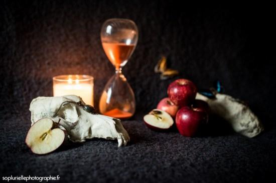 Nature morte - photographie