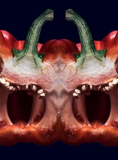 le poivron rorcharch - par sonia blanc