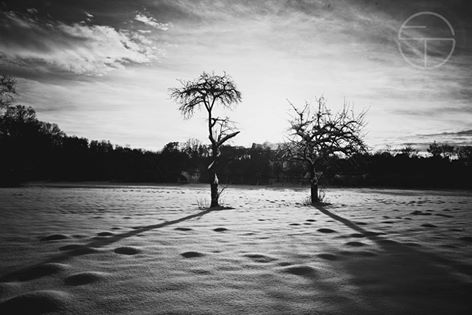 Weekly Favorite at The Monochromatic Lens - http://themonochromaticlens.com/weekly-favorites-0125-0131/