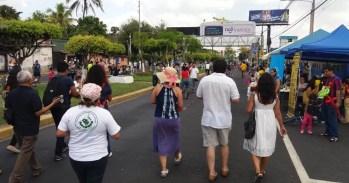 2017'II'19. XII Procesión Armónica - paseo 3