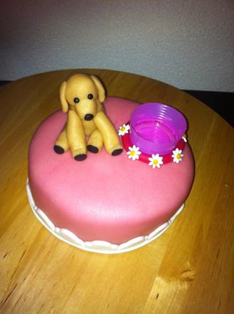 taart_hond2