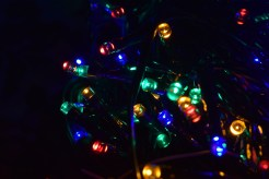 I was trying to untangle these. I got bored and my camera happened to be nearby so...