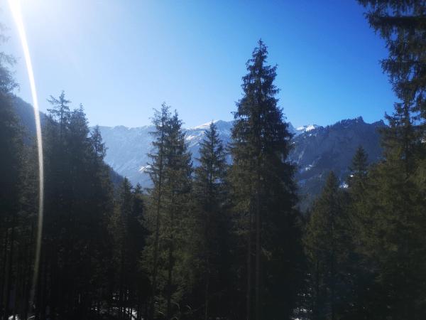 Berg Sonnschienalm