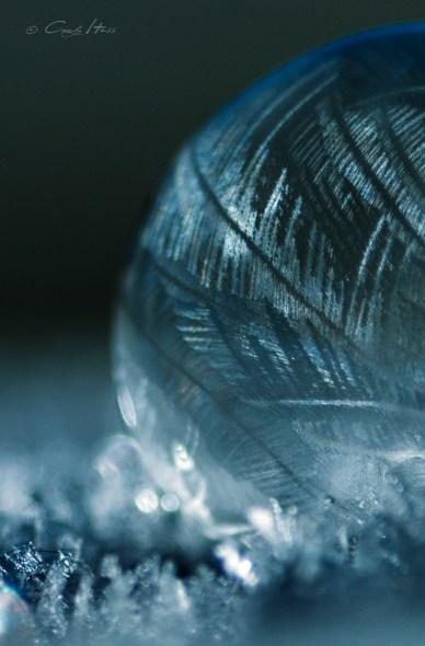 gefroren, bubble, frozen, winter, Makro, macro, how to, tutorial,