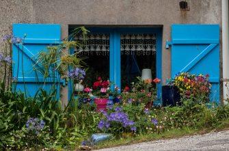 Pflanzen, Fensterläden, blau, window, flowers, Frankreich, France