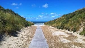 Unser Strandweg - Ginsterpad