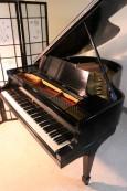 Steinway M Ebony  Grand Piano 5'7