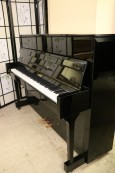 High Gloss Ebony Upright Shubert 44' $950