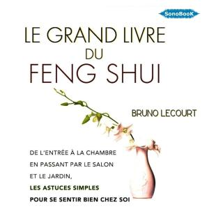LE GRAND LIVRE FENG SHUI_cover