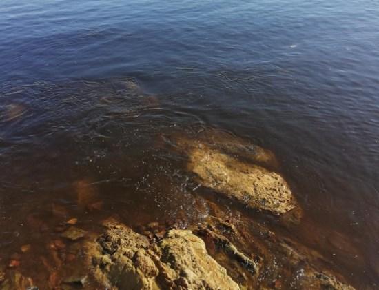 Marea roja en Mazatlán