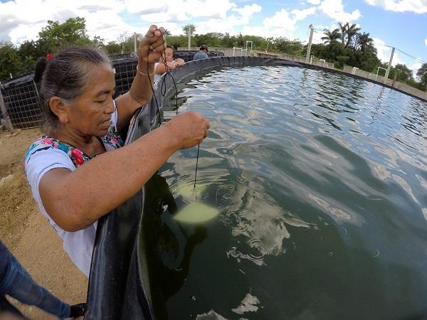 Premio de Pesca y Acuacultura Sustentables