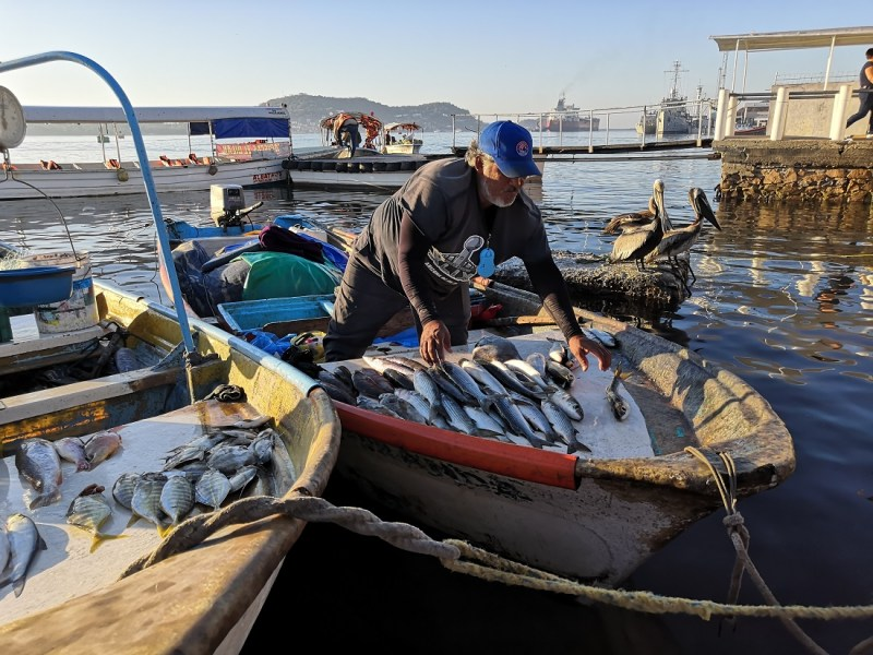 Pescadores siguen trabajando