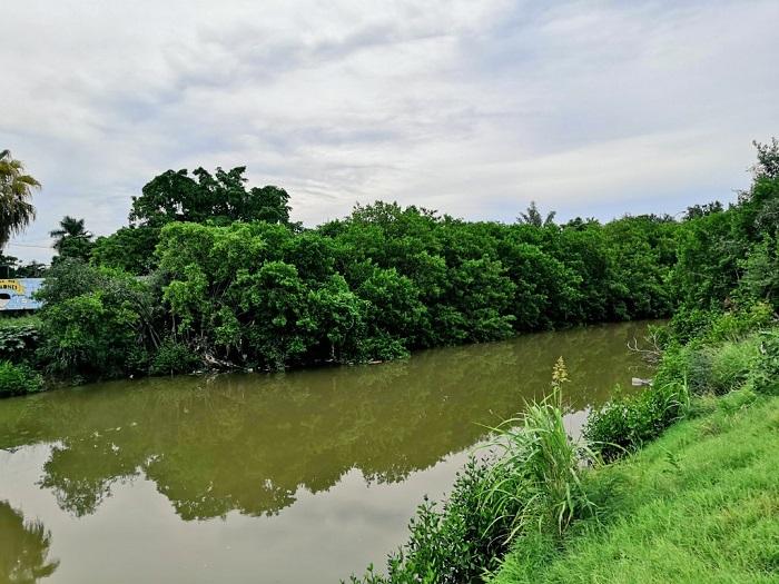 arroyo Jabalines