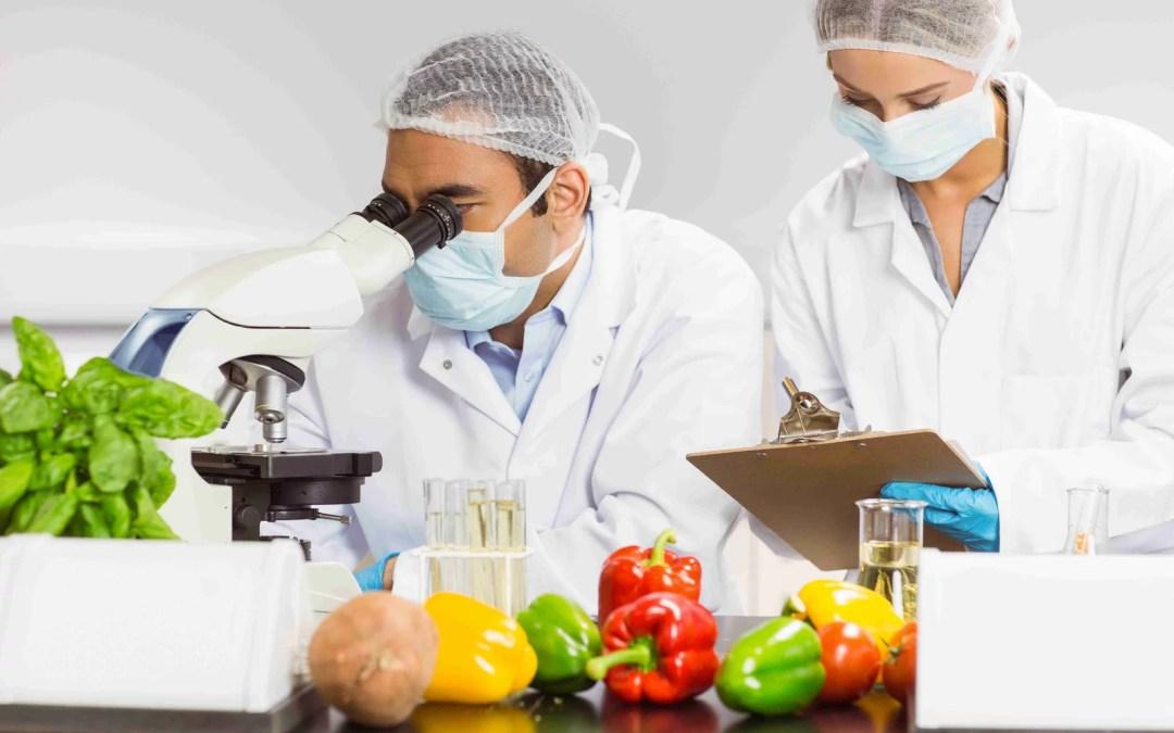 Desarrollo de Nuevos Alimentos