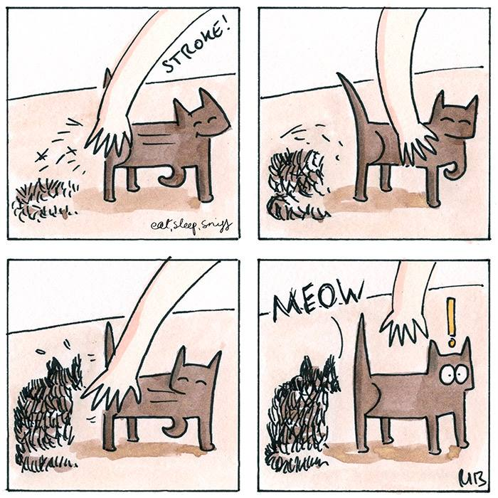 Trucos para eliminar los pelos de gato en casa sonrisas - Como quitar los pelos de gato de la ropa ...