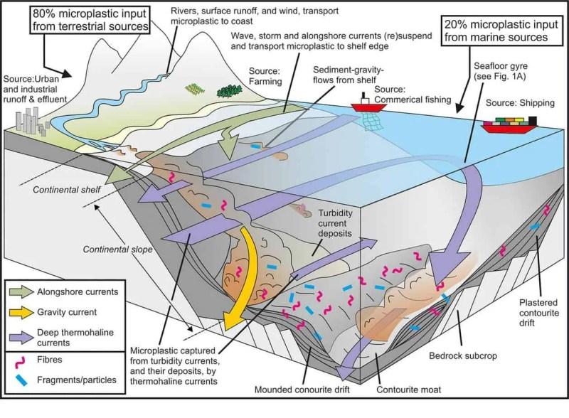 Hotspot microplastiche nel fondo marino del Mediterraneo