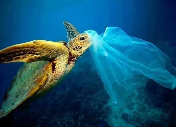 Si stimano 14 milioni di tonnellate di plastica sui fondali oceanici