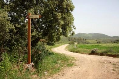 Confluencia del camino la Zorra con las Viñas