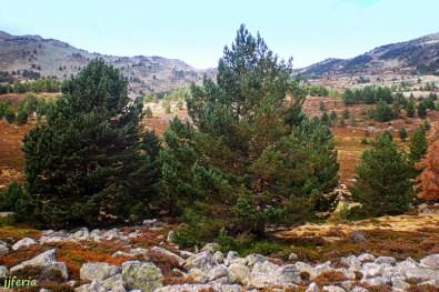 13.Laguna Negra - Pico Urbión
