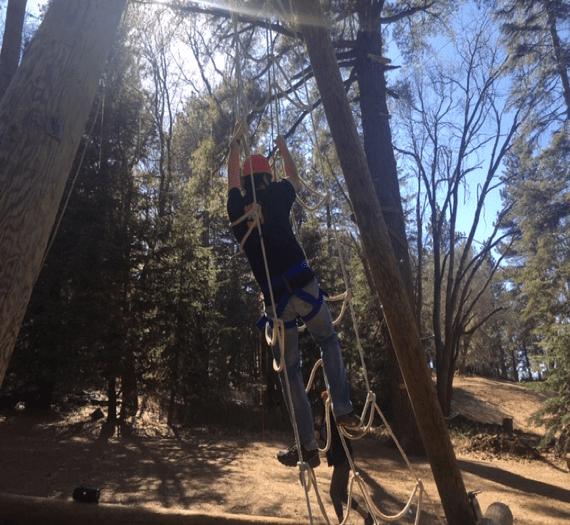 Climbing rope ladder into tree.